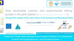 Icon of IMROP-Elimane Kane Pink Lobster Value Chain Analysis